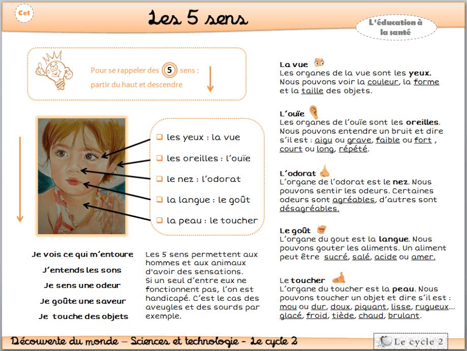 les-5-sens-vue-ouie-odorat-gout-toucher-cp-ce1-cycle-2-trace-ecrite-lecon-fiche-1