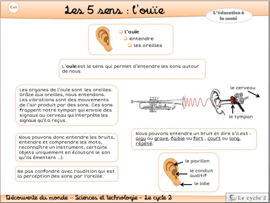 les-5-sens-vue-ouie-odorat-gout-toucher-cp-ce1-cycle-2-trace-ecrite-lecon-fiche-l-ouie-1