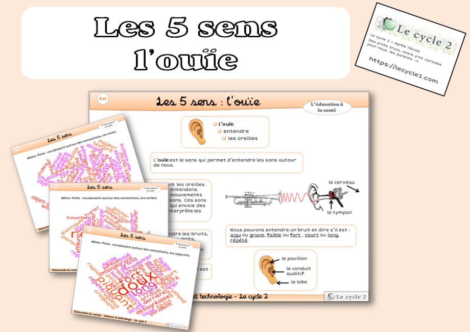les-5-sens-vue-ouie-odorat-gout-toucher-cp-ce1-cycle-2-trace-ecrite-lecon-fiche-l-ouie