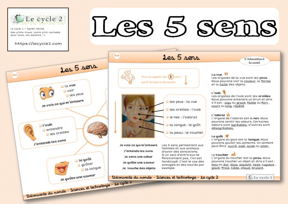 les-5-sens-vue-ouie-odorat-gout-toucher-cp-ce1-cycle-2-trace-ecrite-lecon