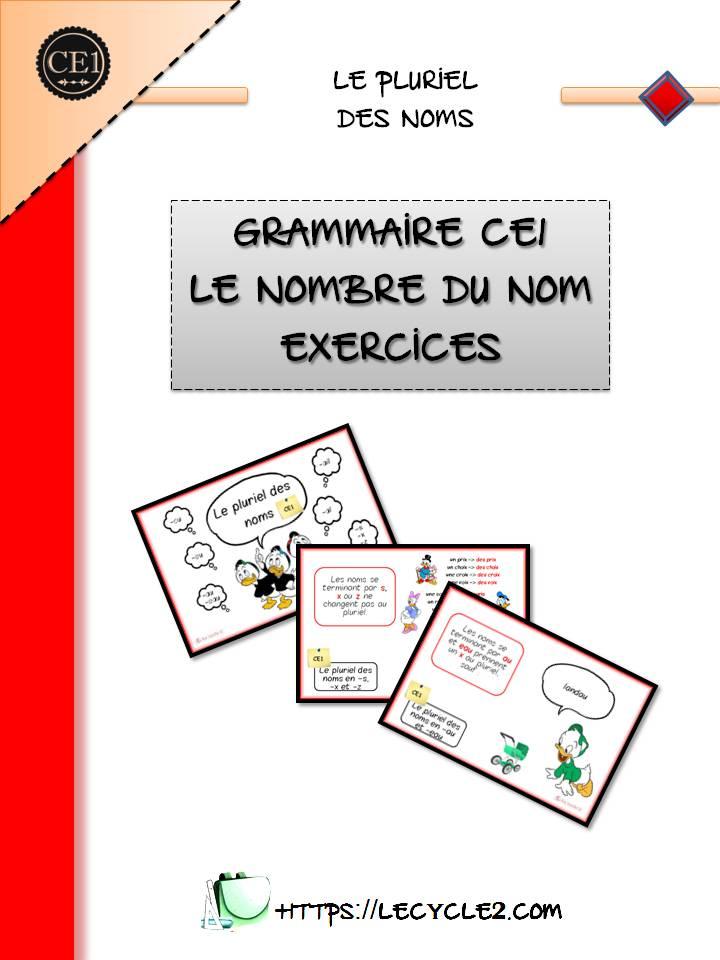 exercices-le-pluriel-des-noms-grammaire-ce1-ce2