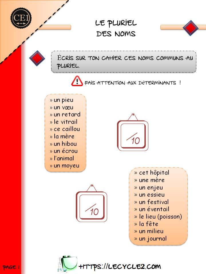 Pluriel Des Noms Ce1 Exercices A Imprimer Le Cycle 2 Apres L Ecole