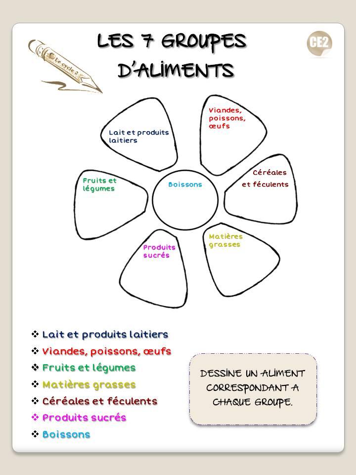 fleur-des-7-groupes-d-aliments-dessine-un-aliment-de-chaque-groupe-ce1-ce2